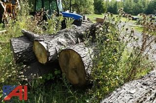 Large Cut Firewood/Logs