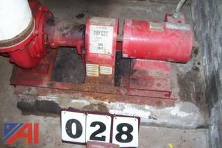Circulator Pumps and Expansion Tank