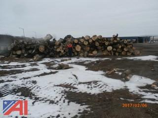 Large Lot of Logs and Limb Wood