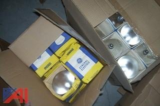 Lot of Bulbs and More