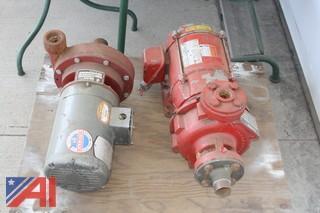(2) Water Pumps