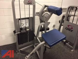Cybex Back Extension Machine