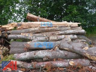 Wood Pile (#1293)