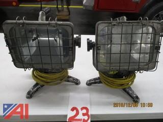 Specialty Lighting 110V Flood Lights