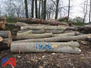(#1526) Hard and Soft Wood Mix