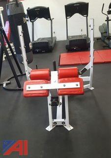 Hammer Strength Exercise Bench