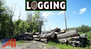 Large Diameter Logs
