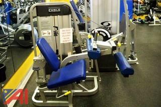 Cybex Eagle Seated Leg Curl #11061-90