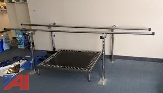 Adjustable Parallel Bars & Pacer-Mat Physical Modulator