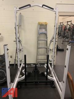 Hammer Strength Squat/Chin Up Rack