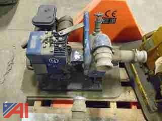 "2"" Briggs and Stratton Hydr-O-Matic Pump, #3"