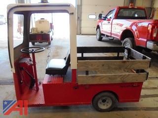 Taylor-Dunn 3 Wheeled Golf Cart