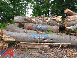 Wood Pile (#1292)