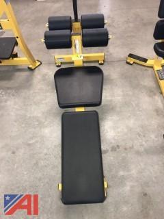 Hammer Strength- Bench