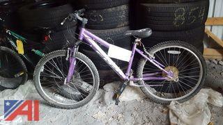 (1) Fuji Bicycle