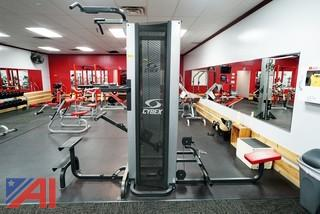 Cybex Assisted Chin-Up/Dip #5611-90/5651-90