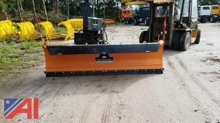 Assaloni 10 ft. Reversible Plow