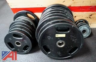 (20) Assorted Plate Weights
