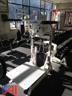 Body Masters MD114A Multi-Hip Machine