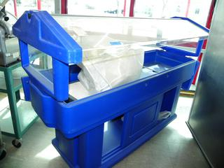 (#17) Cambro Serving Station