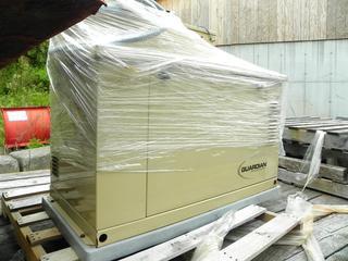 12,000 Watt Generac Guardian Natural Gas Generator with Transfer Switch