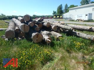 Assorted Lot of Saw Logs