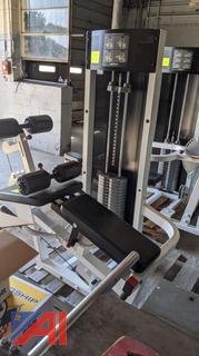 Lift Fitness Back & Leg Extension Machine