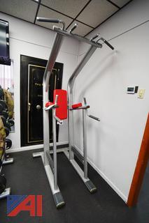Life Fitness Chin Dip/Leg Rise