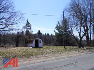 Maple Ridge Rd, Brasher - 11.003-2-23