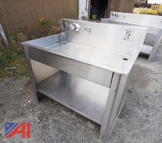 Arkay S/S Lab Sink