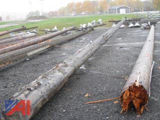 60' + Wood Light Poles