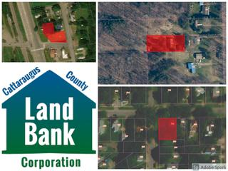 Cattaraugus County Landbank Real Estate Auction #23938