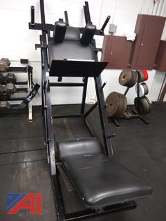 ProMaxima Inverted Leg Press
